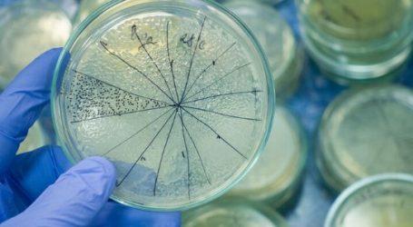 Βακτήριο που προκαλεί διάρροια, έχει πλέον εξελιχθεί για να εξαπλώνεται στα νοσοκομεία