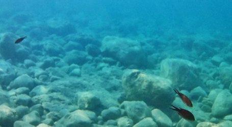 Nέο σύστημα παρακολούθησης της κατάστασης του περιβάλλοντος στις ελληνικές θάλασσες