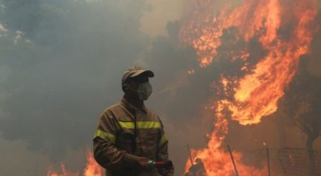 Ενημέρωση Μητσοτάκη – Γεννηματά για τις πυρκαγιές