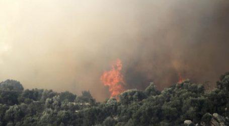 Σε εξέλιξη νέα δασική πυρκαγιά στην Εύβοια