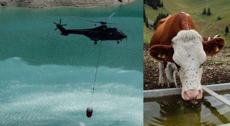 Η Ευρώπη υπό τον καύσωνα: Στην Ελβετία μεταφέρουν αεροπορικά νερό για διψασμένες αγελάδες