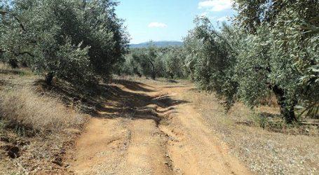 ΣτΕ: Οι δήμοι δεν μπορούν να καταργούν ή να διανοίγουν αγροτικούς δρόμους