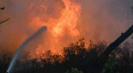 Ο προϊστάμενος της Εισαγγελίας Πρωτοδικών Αθηνών αναλαμβάνει την έρευνα για τις φωτιές