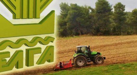ΕΛΓΑ: Πληρώνει αύριο αποζημιώσεις 10,7 εκατ. ευρώ σε 8.825 παραγωγούς