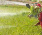 ΕΕ: Καθυστέρηση στην εφαρμογή της ορθής χρήσης των φυτοφαρμάκων