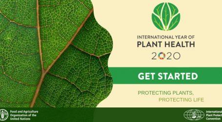 OHE: Tο 2020 Διεθνές Έτος Υγείας των Φυτών