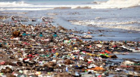 Νήσος Χέντερσον: Το ακατοίκητο νησί του Ειρηνικού έχει μετατραπεί σε χωματερή πλαστικών