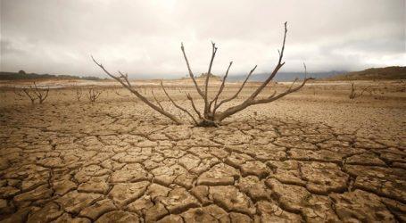 200 προσωπικότητες απευθύνουν επείγουσα έκκληση για να σωθεί ο πλανήτης