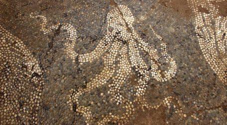 (Εικόνες – Διάγραμμα) Παγκόσμιος θαυμασμός για την αποκάλυψη υπέροχου ψηφιδωτού δαπέδου στο Μικρό Θέατρο της αρχαίας Αμβρακίας