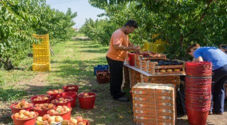 ΕΕ: Ανοιχτή ακρόαση για την επισήμανση της προέλευσης γεωργικών και αγροδιατροφικών προϊόντων