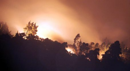 Ολονύχτιος αγώνας με τη φωτιά στη Σιθωνία