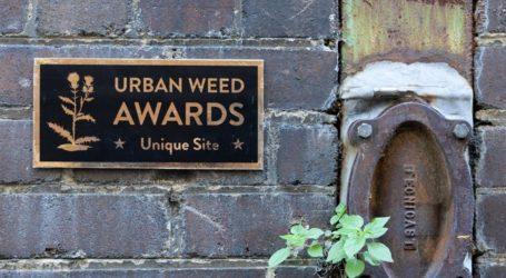 «Urban Weed Awards» από τον Michael Pedersοn