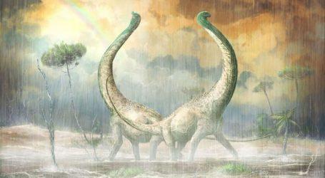 Ανακαλύφθηκε στην Τανζανία το απολίθωμα ακόμη ενός Τιτανόσαυρου