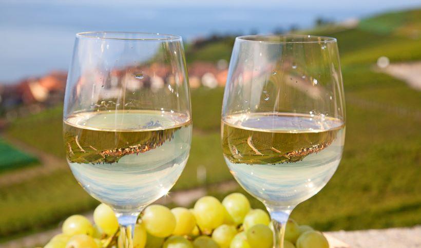 Ανησυχία για νέο γύρο δασμών από τις ΗΠΑ προς τα ευρωπαϊκά και ελληνικά κρασιά